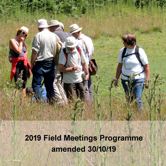 a field meeting