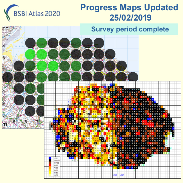 Atlas 2020 end of survey