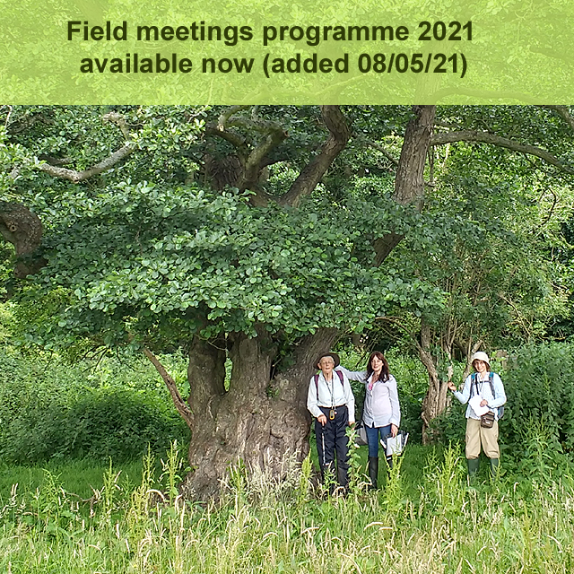 Field meetings programme 2021